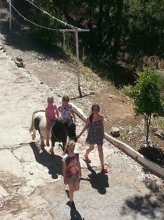 Casas Rurales La Molineta de Guaro: Op stap met Rayo