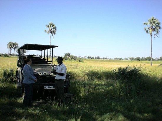 Wilderness Safaris Xigera Camp: Tea break on our game drive