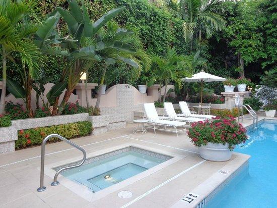 The Chesterfield Palm Beach: Hut Tub