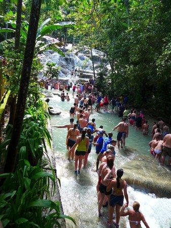 Jamaica Grande Beach: водопад прогулка...
