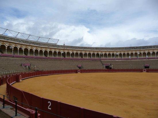Plaza de Toros de la Maestranza : Plaza de Toros