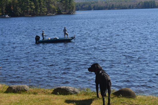 Wolf Cove Inn : Enjoy some relaxing fishing right out our doorstep.  A dog Gabby will be your lifeguard!