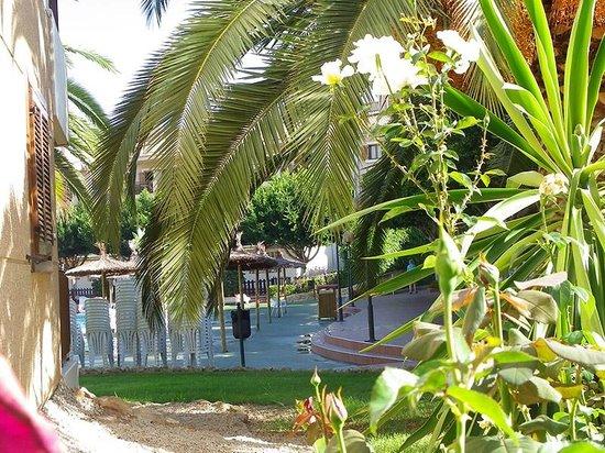 Albir Garden Resort: JARDINES TERRAZA