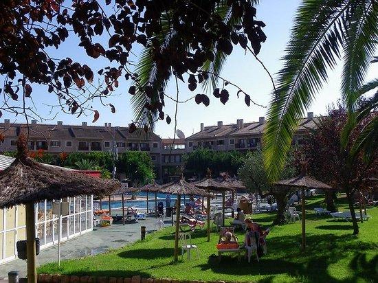Albir Garden Resort: JARDINES SOLARIUM Y PISCINA