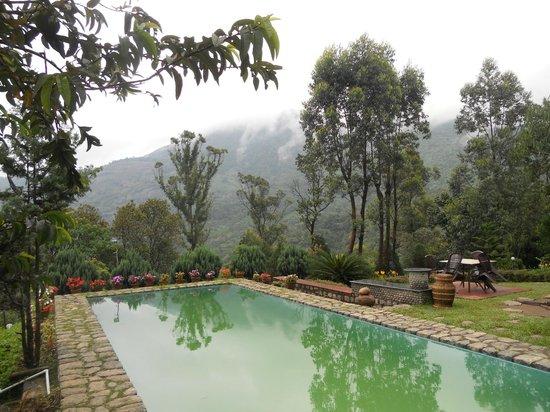 Wild Elephant Eco Friendly Resort: pool
