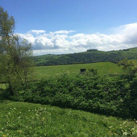 Beechenhill Farm: views