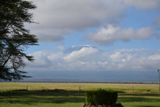 Ol Tukai Lodge: View of Mt. Kilimanjaro from room