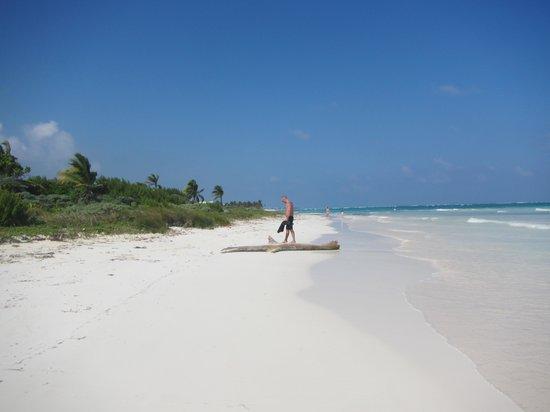 Dreams Tulum Resort & Spa: Walk on the beach