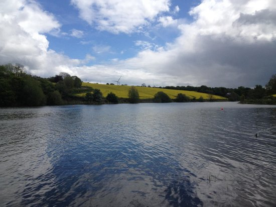 Ulley Reservoir Country Park