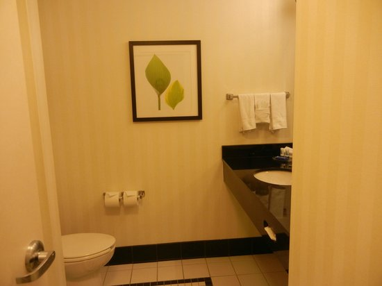 Fairfield Inn & Suites by Marriott Orlando at SeaWorld: Badezimmer