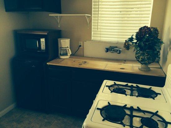 Palomar Inn : Kitchenette with board over sing