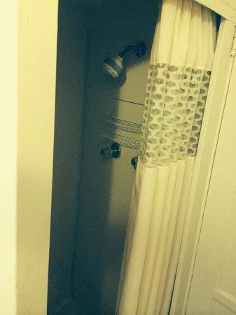 Palomar Inn : Shower - too small to turn around