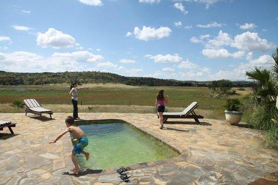 Arub Safaris: Pool area.