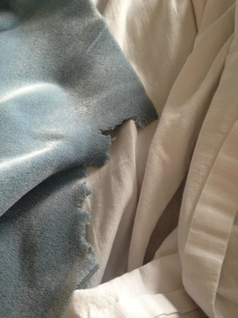 Baymont Inn & Suites Piqua: Torn blanket :-<