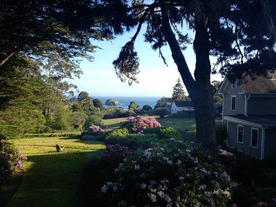 Glendeven Inn Mendocino : View from 'Bayloft'