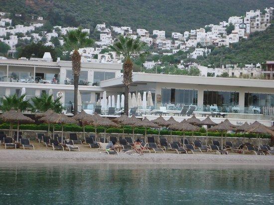 Voyage Torba: restaurant
