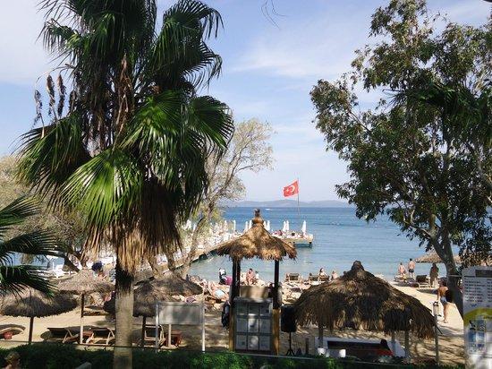 Voyage Torba: vue plage