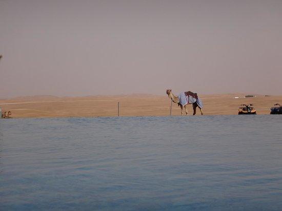 Tilal Liwa Hotel: View Across pool