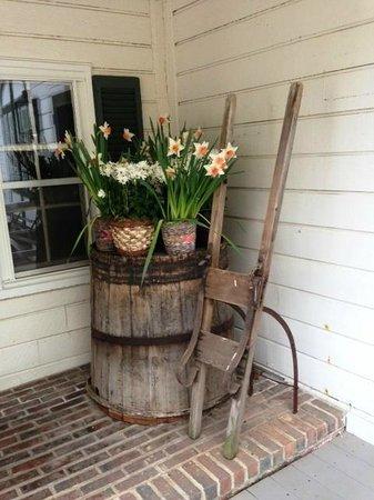Manoir Hovey: Daffodils