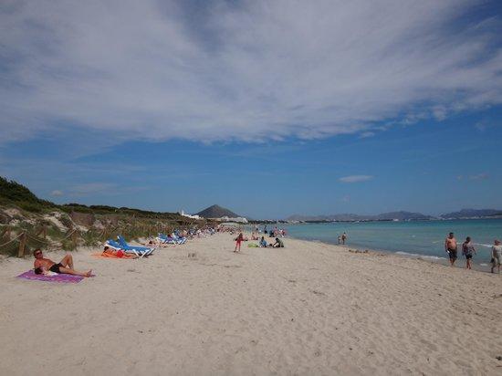 Eden Playa: Super strand mod nord