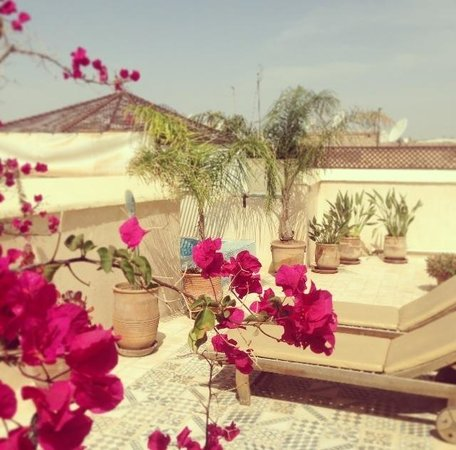 Riad Vert Marrakech: The beautiful roof terrace