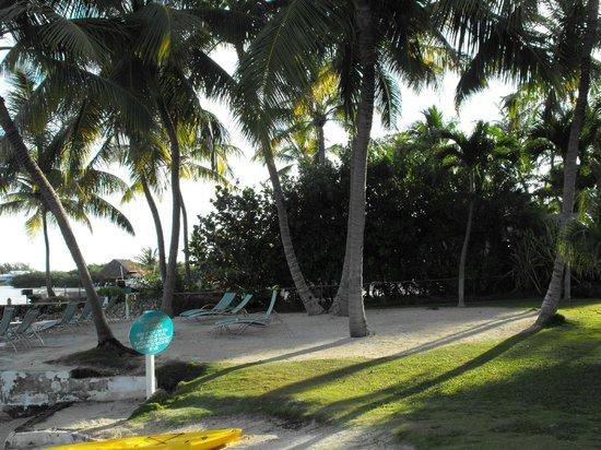 Bay Harbor Lodge : beach