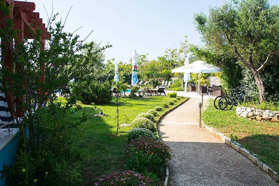 Hotel Manora: Another pool pathway view