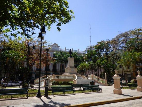 Parque Hidalgo: Park Hidalgo Day