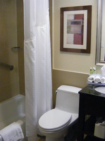 Holiday Inn Express Manhattan Midtown West : Bathroom