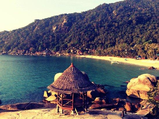 Blooming Lotus Yoga: Haad Yuan Beach