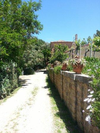 Agriturismo Villa Nicetta : Panorama