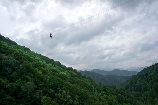 Navitat Canopy Adventures - Asheville Zipline: 350' high