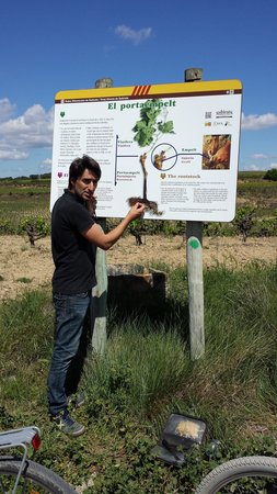 Spanish Trails Day Tours and Events : Alberto explaining the grafting process
