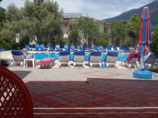 Gorkem Hotel: poolside view