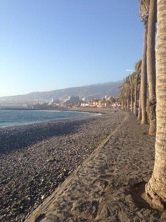 Coral California: beach