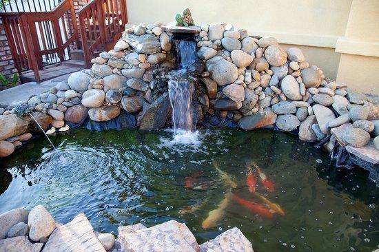 Traveler's Inn : Koi Pond