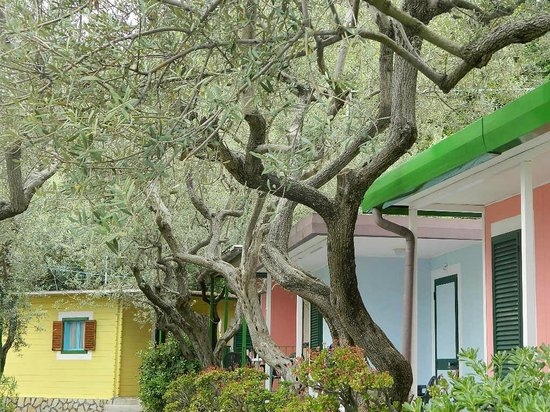Villaggio Resort Nettuno : I bungalow