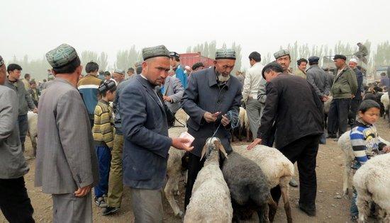 Kashgar Offbeat Tours Silk Road Adventure: Negotiating for a sheep