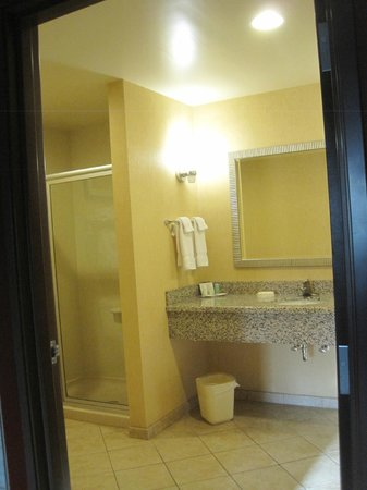 Comfort Suites West of the Ashley: Room 411