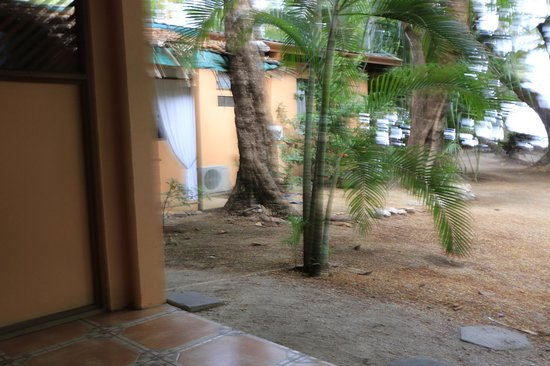 La Palapa: view from my door (porch) towards restaurant area