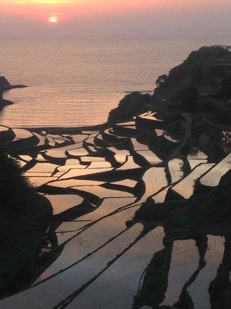 Genkai-cho, Japón: 夕日に光る棚田