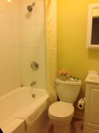 Santa Paula Inn : Our bath area.