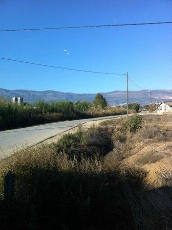Hagoshrim Hotel & Nature: Vista de los Altos de Golán