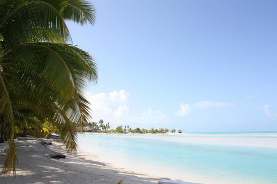 Aitutaki Village : Palm trees along the beach