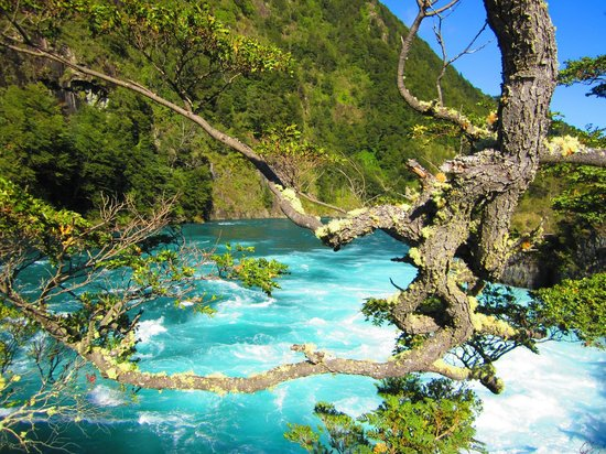 Saltos del Petrohue: Agua de color increible