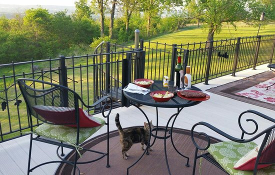 Up Up and Away Lodging: Private deck with Pancake the cat.  She added to the ambience.
