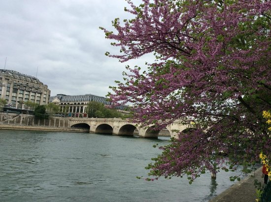 Pont-Neuf: View of Pont Neuf from park in the Ile de la Cite