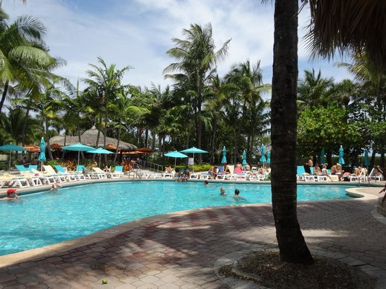 Hotel Riu Plaza Miami Beach : Pool