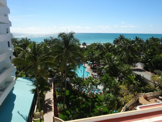 Hotel Riu Plaza Miami Beach: Pool/Ocean View room