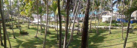Vista Sol Punta Cana: Vista de la habitacion